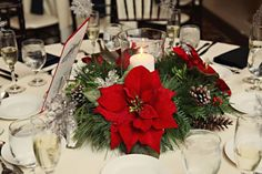 Poinsettia reception table centerpiece at a Christmas wedding in Baltimore. Photo: Birds of a Feather Photography