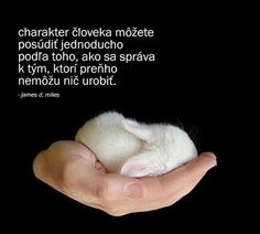 Simple Roumí´s Life: Citáty Dňa Thinking In Pictures, Inspire Me, Motivational Quotes, Humor, Words, Lifestyle, Animals, Instagram, Psychology