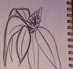 quick sketches from a walk: rhododendron bud Quick Sketch, Bud, Sketches, Drawings, Doodles, Sketch, Gem, Eyes, Tekenen