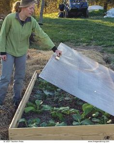 4 Ways to Use a Cold Frame  - 1. overwinter dormant plants (tropical, tender) 2. give seedlings an early start 3. harden off young seedlings 4. extend season past frost