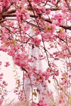 Eiffel Tower in Spring, Paris