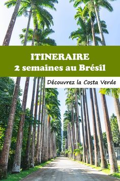 Découvrir la Costa Verde - Itinéraire de 2 semaines au Brésil
