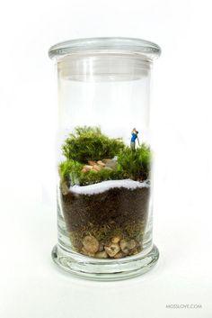 Sandtrap terrarium $38 by MossLoveTerrariums