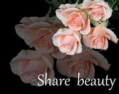 Share beauty