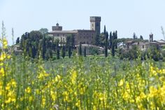 View Poppiano Castel from San Quirico in Collina near Le Torri holiday rentals.