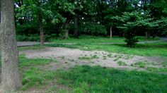 #westerleigh #northerleighpark #statenislandparks #statenisland #parks #RealEstateSINY