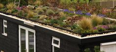 Living Roof with Alpine PlantingA green-roof adds an additional dimension to a garden building but needs careful planning to succeed This Green Roof Garden lives on top of one of my garden building… Green Roof Benefits, Urban Heat Island, Garage Roof, Roof Installation, Living Roofs, Roof Structure, Garden Buildings, Small House Design, Roof Repair