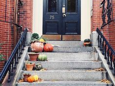 Halloween is such a fun day in our city — we love to see our familiar spaces transformed by decorations, […] New England Fall, New England Travel, Boston Things To Do, Free Things To Do, Boston With Kids, Boston Restaurants, Living In Boston, Day Book, City Living
