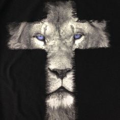 Lion Cross - Lion of Judah | Godinterest