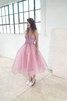 Pastel princess x