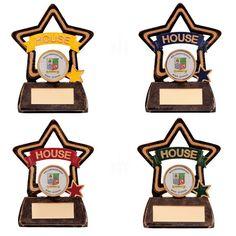 House School Trophy Award