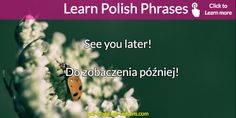 Want to learn the most USEFUL Polish Phrases? Here you learn including English translations, pronunciations and explanations. AUDIO lesson inside too. Learn Polish, Polish Words, Polish Language, Language Lessons, English Translation, Languages, Teaching, Polish, Learning