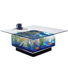 Midwest Tropical Aquarium Coffee Table combines the elegance of a coffee table and a functional design of an aquarium.