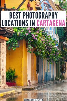 Discover the best photography locations in Cartagena, Colombia, including Ábaco Libros y Café, Hotel Movich, streets with colorful houses, and even two umbrella streets! | places to take pictures in Cartagena | things to do in Cartagena | best photo spots in Cartagena | where to take photos in Cartagena Colombia | Instagram spots in Cartagena Colombia South America Destinations, South America Travel, Travel Destinations, Bolivia Travel, Colombia Travel, Travel And Tourism, Travel Info, Travel Ideas, Travel Tips