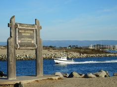 Moss Landing, California, a quiet little town in Monterey County with abundant sea life, a very active marina, and delicious food!
