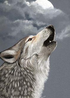 Gray Wolf Howling Drawing Howling Wolf by...