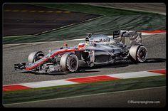Circuit de Catalunya 2015. Fernando Alonso