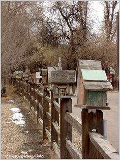 Fence hung with hundreds of birdhouses ~ Snake River basin, Idaho.  AWESOME