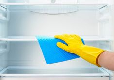 National Clean Out Your Fridge Day is the perfect opportunity to tackle that science experiment that's been growing in your refrigerator! Self Cleaning Ovens, November, Deep, Tattoo, Blog, Electric Oven, Fiestas, Model, Tips