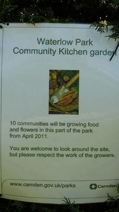 Community garden ideas...
