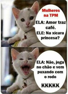 New funny humor memes sisters ideas Gato Do Face, Cat Memes, Dankest Memes, Ted, Good Humor, Try Not To Laugh, Funny Moments, Funny Photos, I Laughed
