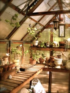 My little greenhouse was a Birthday gift to me by my husband Ken...we bought the kit and he put it together.  :o)