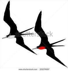 Seabirds Vecteurs de stock et clip-Art vectoriel | Shutterstock