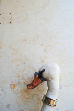Mister Finch : Fabric Swan Head