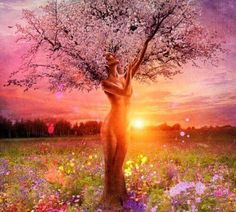 BRUTTI MOMENTI ... Nella vita , tutti attraversiamo brutti momenti. Le foglie cadono, ma l'albero resta sempre in piedi