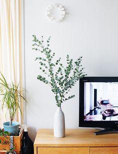 【店長コラム】ユーカリの枝1本でミニブーケ作りからテレビボードの上の飾りつけまで。 – 北欧、暮らしの道具店 Green Flowers, Cut Flowers, Ikea Vases, Plant Cuttings, Vase Arrangements, Flower Bouquet Wedding, Decoration, Artificial Flowers, My Room