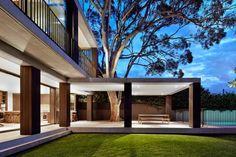 Diseño de Interiores & Arquitectura: Ampliación de una Casa Moderna en Sydney Preservando Creativamente un árbol existente (evening)