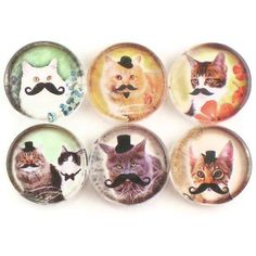 Cats with Mustaches (magnets)
