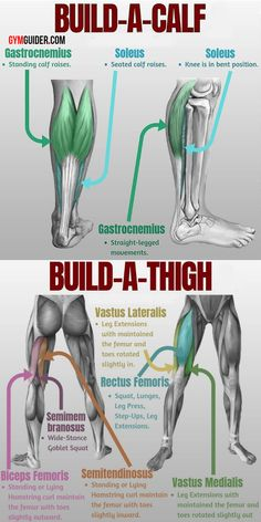 The Top 9 Best Thigh And Calf Exercises Ever Devised In One Workout - Real Time - Diet, Exercise, Fitness, Finance You for Healthy articles ideas Leg Training, Training Fitness, Weight Training Workouts, Fitness Tips, Fitness Models, Full Leg Workout, Gym Workout Tips, Calisthenics Leg Workout, Deltoid Workout