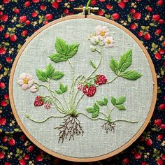 Strawberry plant embroidery, botany embroidery, hoop art, botany art, handmade embroidery by Stitchingnoob on Etsy