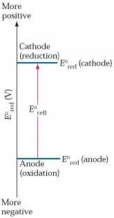 The standard cell potential of a voltaic cell measures the difference in the standard reduction potentials of the cathode & the anode reactions: E°cell = E°red (cathode) – E°red (anode). In a voltaic cell the cathode reaction is always the one that has the more positive (or less negative) value for E°red.
