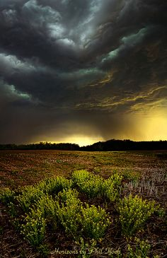 Storm Chaser captured the fat roller belly clouds! Beautiful Sky, Beautiful World, Cool Pictures, Beautiful Pictures, Nature Pictures, Tres Belle Photo, Wild Weather, Storm Clouds, Natural Phenomena