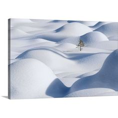 Canvas On Demand Standing in the Waves by Victor Liu Photographic Print on Canvas Size: