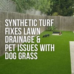 Find out how to fix you lawn drainage issues and pet potty problems with artificial grass from Heavenly Greens. Pet Grass, Faux Grass, Artificial Grass For Dogs, Artificial Turf, Dog Backyard, Backyard Fences, Backyard Ideas, Lawn Care Business, Modern Design