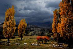 San Martín de los Andes. Argentina. Paisaje.