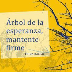 """Español: """"Árbol de la esperanza, mantente firme.""""  English: """"Tree of hope, stand firm.""""  —Frida Kahlo"""