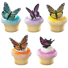 DecoPac Butterflies DecoPic Cupcake Picks (2-Pack of 12) *** Remarkable discounts available  : baking desserts recipes