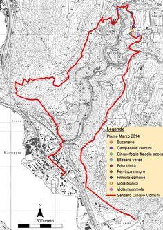 Sentiero 5 comuni, Valle Mara Switzerland, Hiking, March, Walks, Trekking, Hill Walking