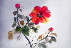 Sema Suaydın / Sumi-e (Japon mürekkep resmi)