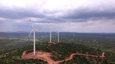 Australia's AGL lines up funding for $340 million wind farm