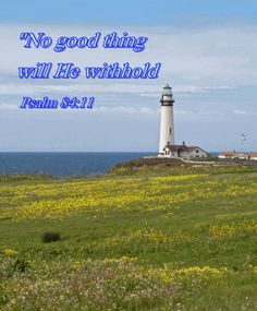 """Many pleasing things the LORD may withhold but """"no good thing."""" He is the best judge of what is good for us. Some things are assuredly good, and these we may have for the asking through Jesus Christ our LORD. - C.H. Spurgeon"""