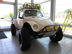 I will own a Baja Bug. Bus 5spd trans, long travel suspension, and a 350 horse 2.3T hanging off the back.