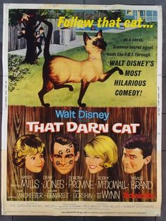 THAT DARN CAT Crisp funny Disney domestic comedy finds a cat the key to a bank heist and kidnapping. Hayley Mills and Dean Jones get great support from a roster of solid character actors like Elsa Lanchester and Ed Wynn. Classic Disney Movies, Disney Films, Classic Movies, Original Movie Posters, Movie Poster Art, Film Posters, Neville Brand, Ed Wynn, Poster