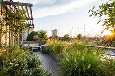 Pergola Attached To Roof Urban Garden Design, Garden Design London, Small Garden Design, Garden Club, Terrace Garden, Rooftop Terrace Design, Rooftop Gardens, London Clubs, Landscape Design