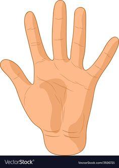 Number five Royalty Free Vector Image - VectorStock Human Body Activities, Senses Activities, Art Activities For Toddlers, Preschool Activities, Body Parts For Kids, Body Parts Preschool, Human Body Parts, Teach English To Kids, English Grammar For Kids