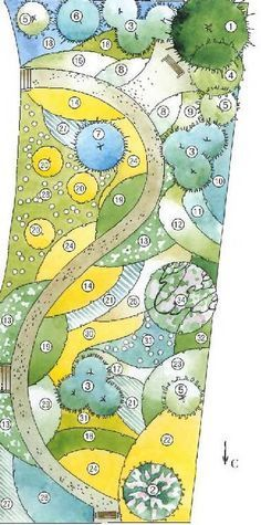 Beautiful colour blocking garden plan of a blue, yellow and white colour themed garden.